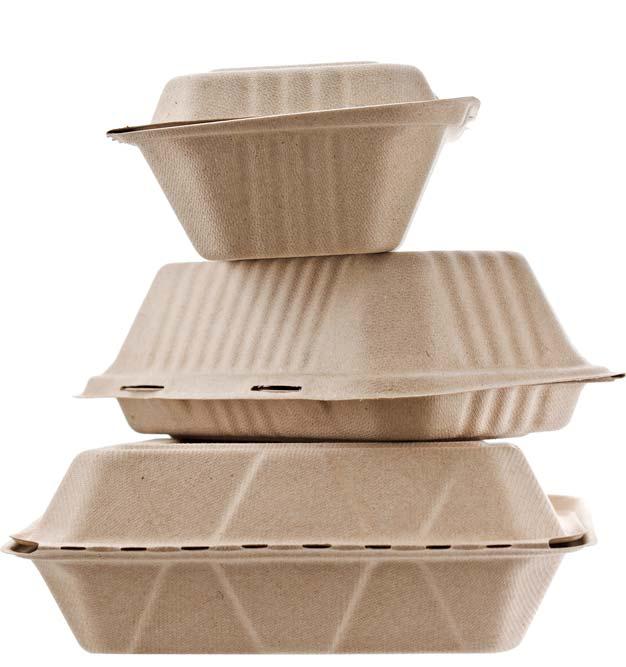 Fornitura contenitori da asporto e take-away per ristoranti