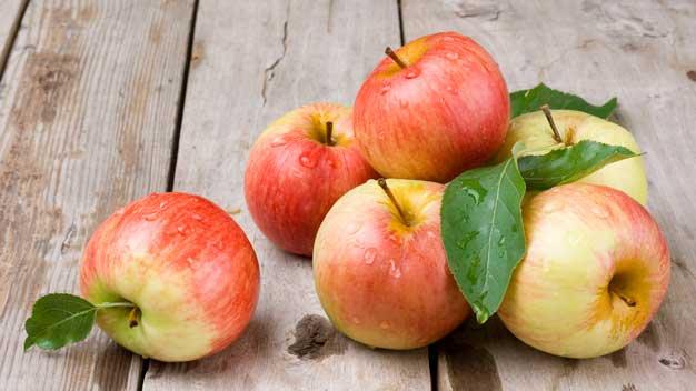 Fornitura frutta e verdura per ristoranti: prodotti BIO e naturali